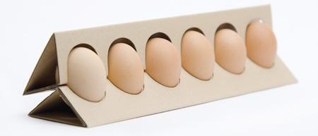 картонная дизайнерская упаковка для яиц фото